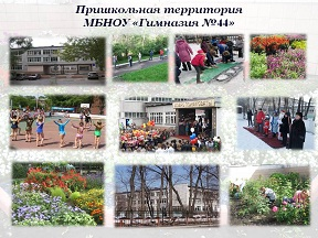 МБНОУ Гимназия №44